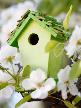 Real Estate: This Spring Will Be Different