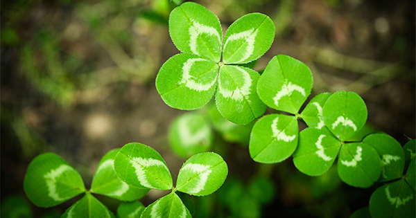 """Don't Let Your """"Luck"""" Run Out   Keeping Current Matters"""